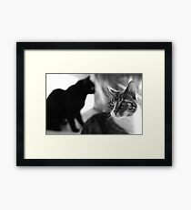 Centre of attention (B&W) Framed Print