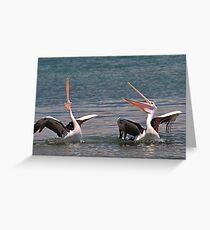 Phil Woodman's Pelican Joke! Greeting Card