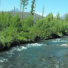 Stream at Glacier National Park by Susan Russell