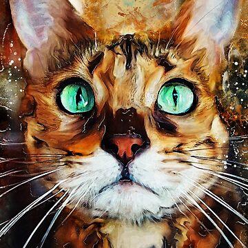 Cat Jasper #cat #cats #kitty by JBJart