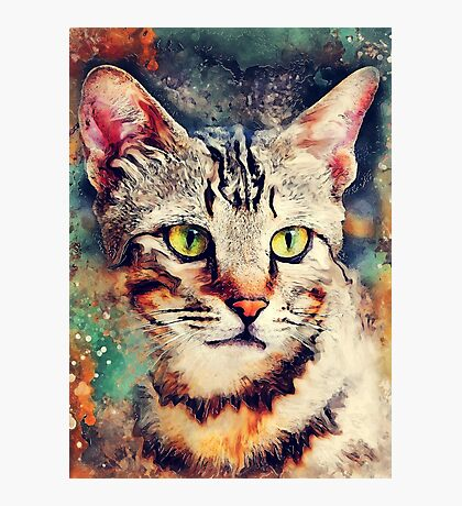 Cat Tiger #cat #cats #kitty Photographic Print
