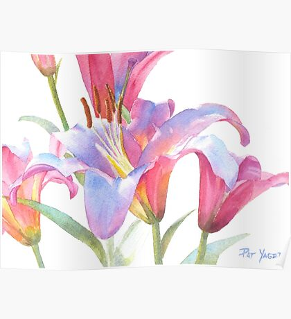 Watercolor Lily Close-up Poster