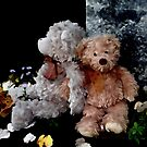 Teddy Bear Buddies by Beth Brightman
