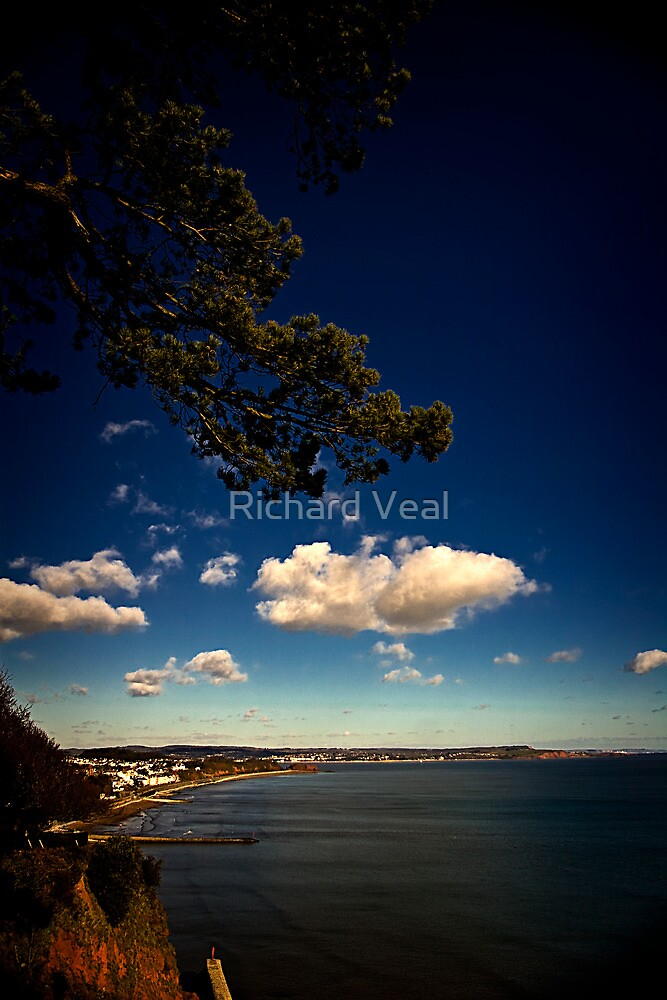 Greetings from Dawlish by kcphotography
