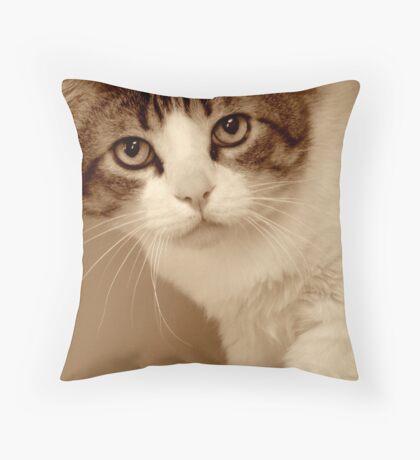 Feline Finesse Throw Pillow