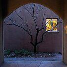 Bluebird alleyTaos New Mexico by chrissylong