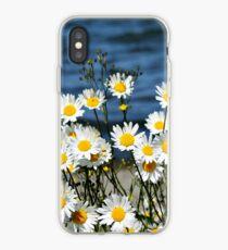 Daisy-Daisy iPhone-Hülle & Cover