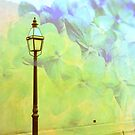 Romantic Lights by Susanne Van Hulst