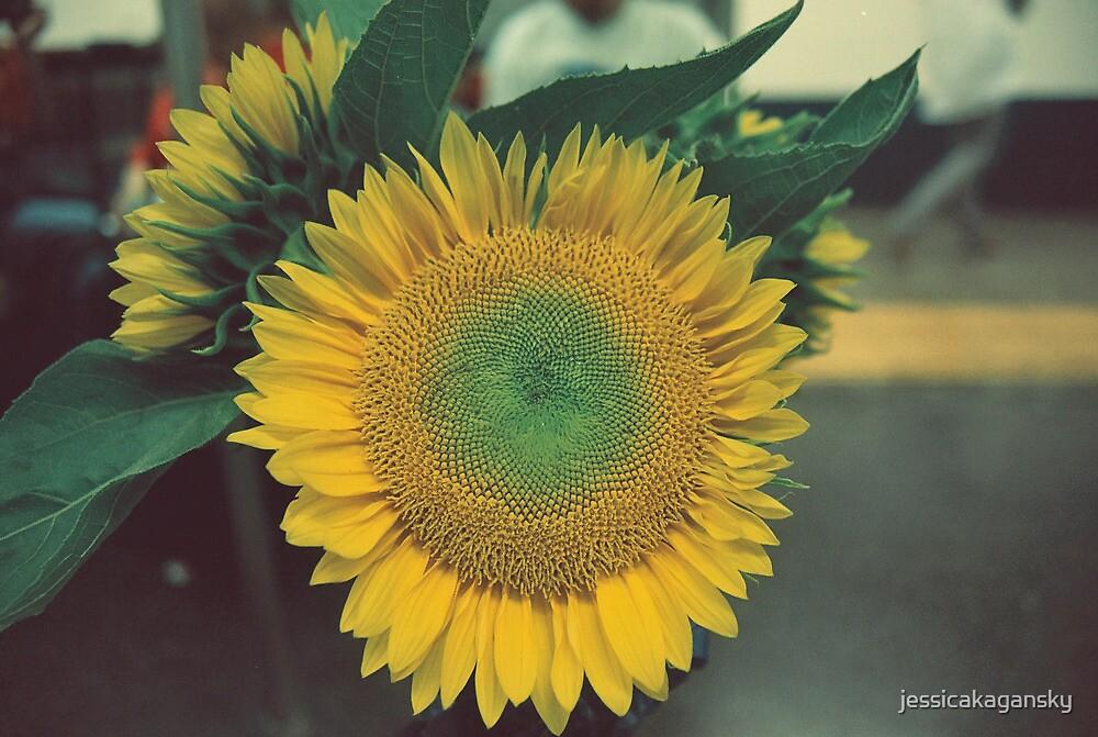 Sunflower-MTA, NYC by jessicakagansky