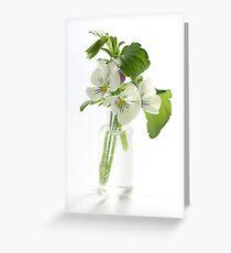 white pansies Greeting Card