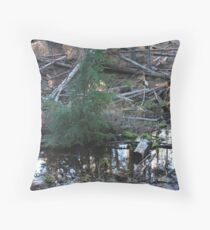 Jack Spring Headwaters Throw Pillow