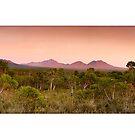 Stirling Ranges Sunrise by Kirk  Hille