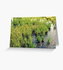 Green Natural Beauty Greeting Card