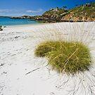 Silica Beach, Kimberley Coast by Tim Wootton