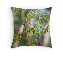 Cedar Wax Wing feeding on Cherries Throw Pillow
