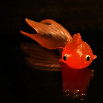 GoldFish by terrebo