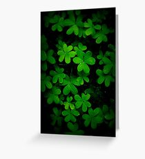 """Little Green"" Greeting Card"