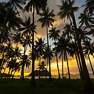 Sunset Through The Coconut Grove - Elnido by Bobby McLeod
