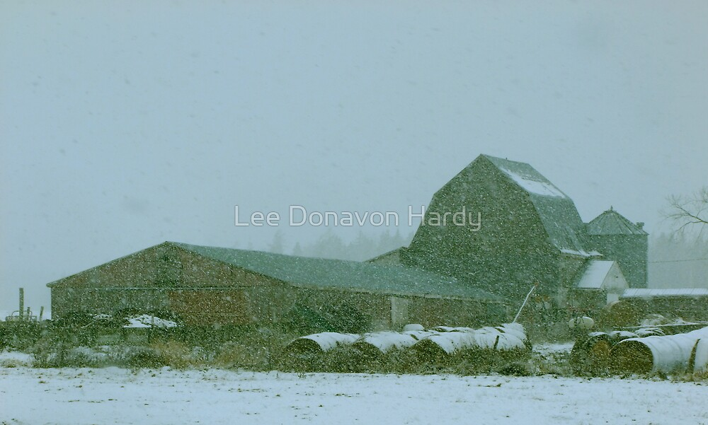 Farmstead.....Snowy Day by Lee Donavon Hardy