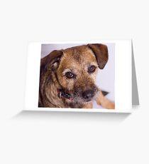 Puppy Dog Eyes Greeting Card