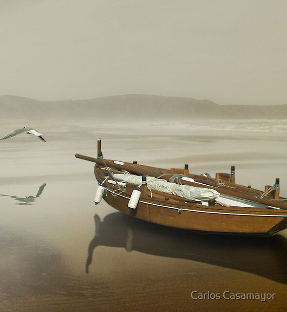 The solitude of the sea by Carlos Casamayor