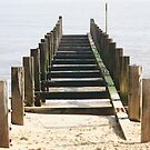 Groyne Leading into the Sea by shane22