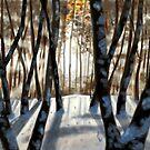 L'hiver by Soualigua