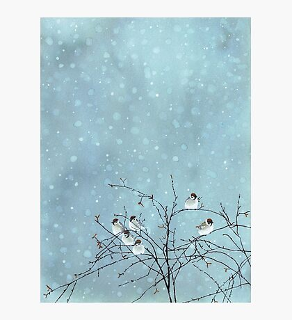 Petits Oiseaux Impression photo