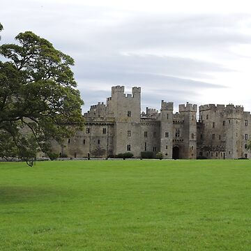 Raby Castle by CreativeEm