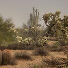 Desert Morning Mist by Sue  Cullumber