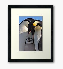Emperors and Chick - Snow Hill Island Framed Print