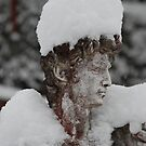 David with a hat of snow by Michael Brewer