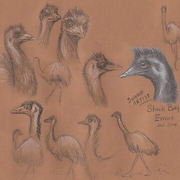 Emu by SnakeArtist