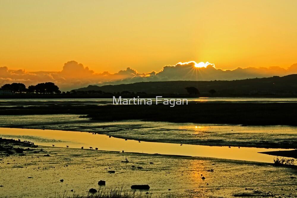 January Baldoyle Estuary Sunrise by Martina Fagan