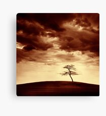 What Will Be the Legacy Canvas Print