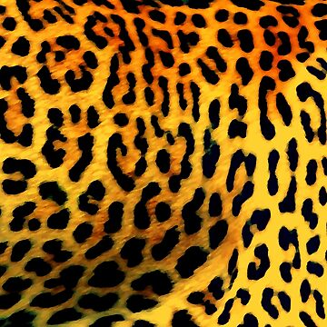 panting leopard by Randle