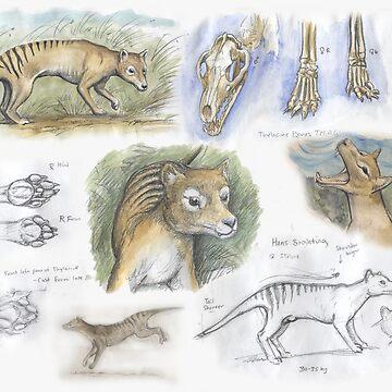Thylacine journal by SnakeArtist