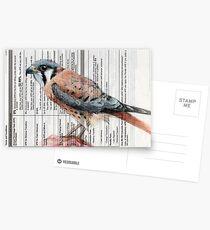 APR Falcon Postcards