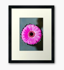 Flower on a Still Pond Framed Print