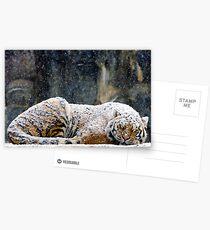 Warmer Mantel Postkarten
