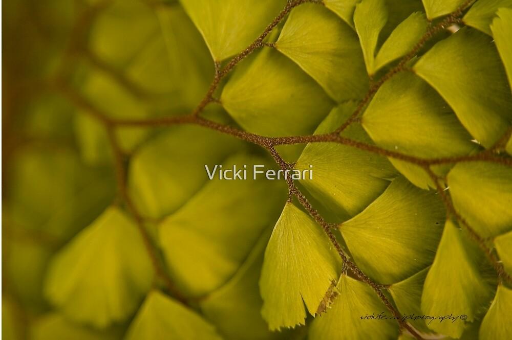 Bedazzled In Depth Right © Vicki Ferrari Photography by Vicki Ferrari