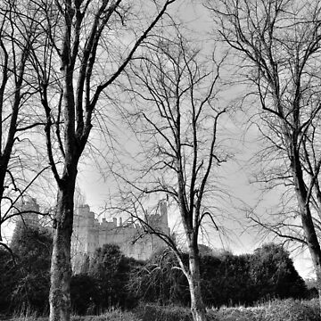 English Castle by NaturesEarth