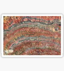Fossilized Stromatolites Sticker