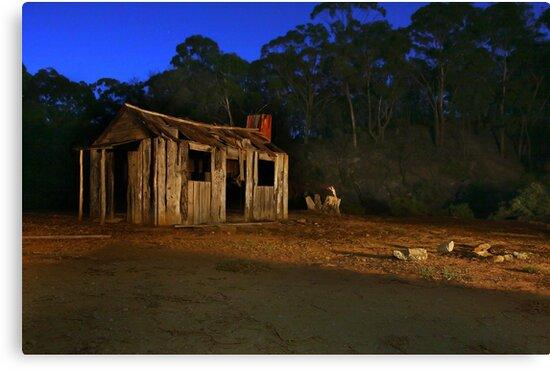 Lights Camera Action by David  Hibberd