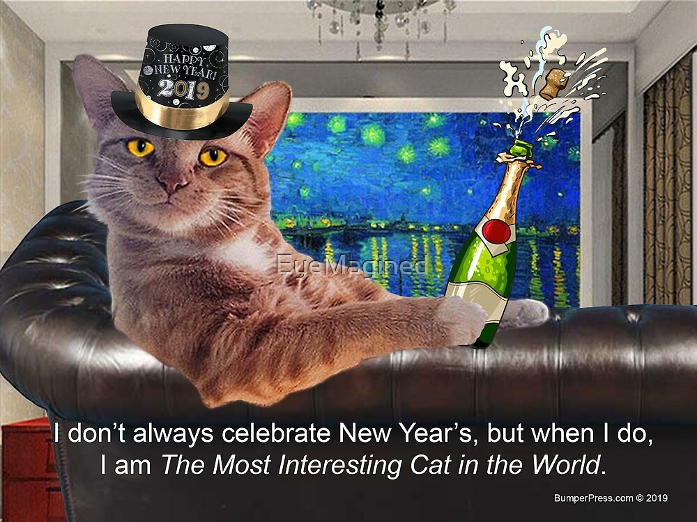 The Most Interesting Cat New Year's by EyeMagined