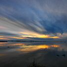 Delta Sunset by Barbara  Brown
