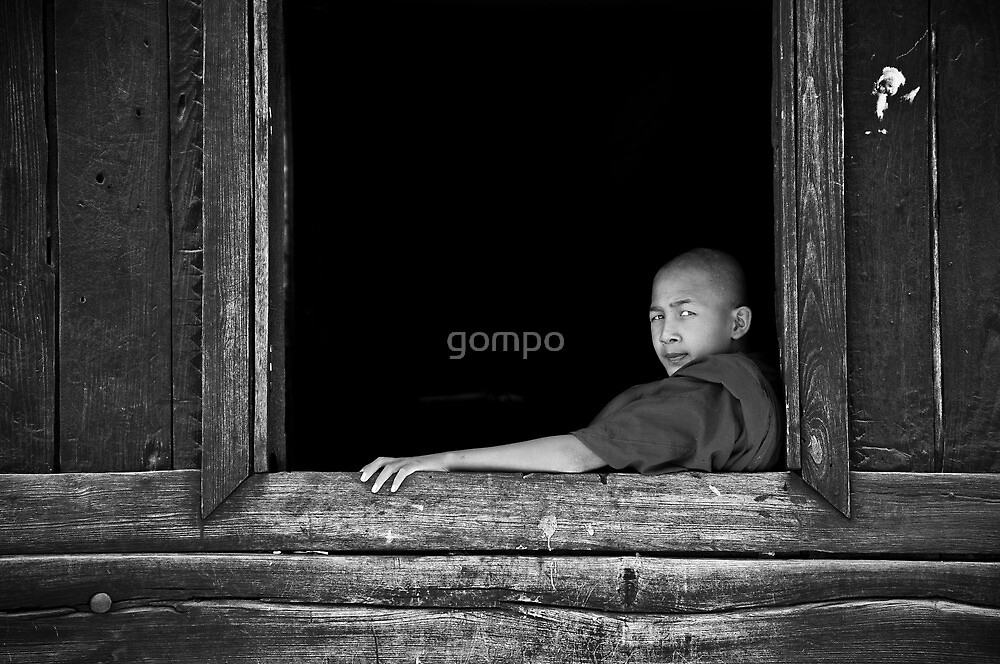 window by gompo