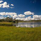 Three Mile Dam by Richard  Windeyer