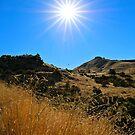 This Idaho Sun  by JulieMaxwell