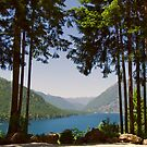 Lake Cushman in Summer by Stacey Lynn Payne